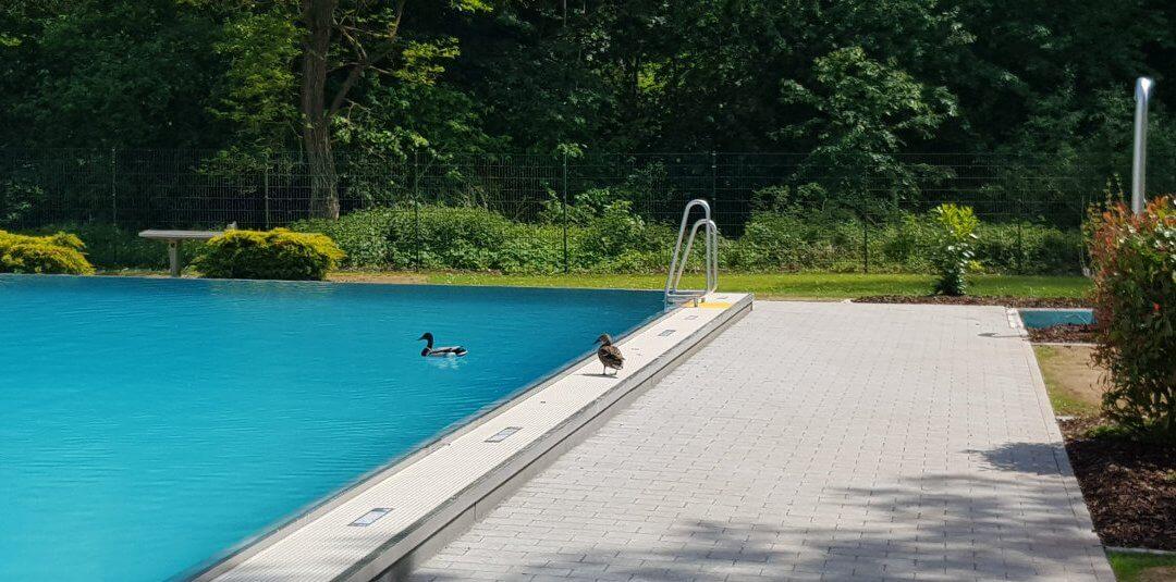 Schwimmbad 2020